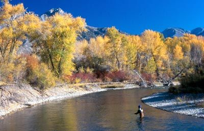 Ketchum fly fishing on the Lost River in Autumn