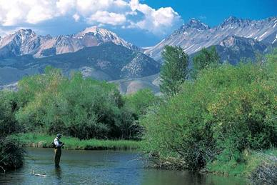 Evening Hatch, Sun Valley fly fishing at its best
